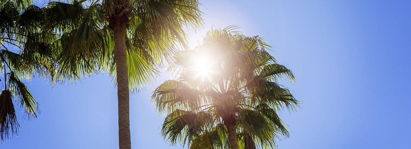 Senior Sun Safety